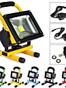 10W LED Floodlight 1 High Power LED 1000 lm Warm White Rechargeable AC 100-240 V