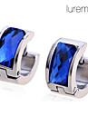 Серьги-кольца Нержавеющая сталь Титановая сталь Имитация Алмазный Синий Бижутерия Повседневные Новогодние подарки