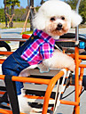 Dog Costume Clothes/Jumpsuit Green Rose Dog Clothes Winter Spring/Fall Jeans Cosplay Casual/Daily