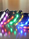 LED luminous dog collar Random Colors 1Pcs
