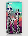 Three Giraffe Pattern Phone Case Back Cover Case for iPhone5C