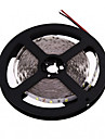 ZDM™  5M LED 300*5630 SMD DC12V Warm White / Cool White LED Strip Lamp 40W
