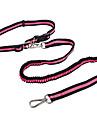 Cat / Dog Leash / Hands Free Leash Adjustable/Retractable / Hands free / Running Stripe Pink / Yellow Nylon