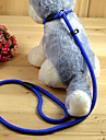 Cat Dog Leash Slip Lead Adjustable/Retractable Solid Red Black Blue Coffee Nylon