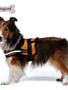 Dog Harness Reflective / Breathable Solid Red / Black / Orange Nylon / Mesh