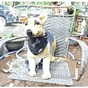 Dog Bandanas & Hats Black Dog Clothes Spring/Fall Doglemi
