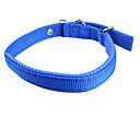 Hunde Halsbänder Regolabile/Einziehbar Solide Rot / Blau Nylon